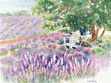8 Lavender Notecards with Envelopes - Printed Watercolor Images of Red Rock Lavender Farm