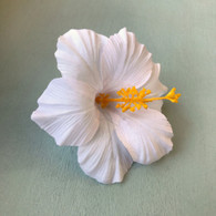 White Hawaiian Hibiscus Flower Hair Clip by Juicy Lucy