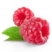Raspberry-FA