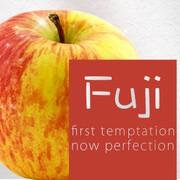 Fuji-FA