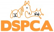 vet-hospital-at-dspca-180x108.jpg