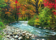 Forest Stream 1000-Piece Puzzle