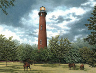 A beautiful illustration of wild horses at the Currituck lighthouse!