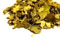 Moringa Oleifera Leaf C/S