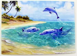 Dolphins Note Cards Box of 8 - 08-008