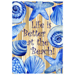Better at the Beach House Flag 1947FL