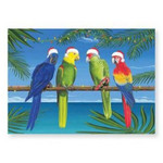 "Christmas Cards ""Holiday Parrots"" Box of 16 - 25-504"