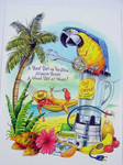 Parrot Greeting Card - BKG45950