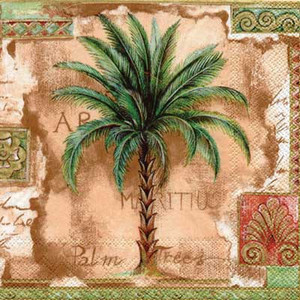 Palm Tree Paper Cocktail Napkins Brown - C385930