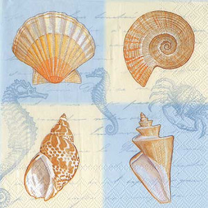 "Sea Shell ""Sounds of the Sea"" Paper Luncheon Napkins L443440"