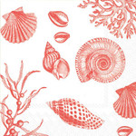 Red White Shell Beverage Paper Cocktail Napkins C551402