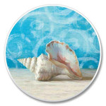 Beach Sea Shells Stone Car Coaster Cupholder 03-057