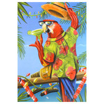 Tropical Beach Parrot Christmas Cards Box of 10 - C72800