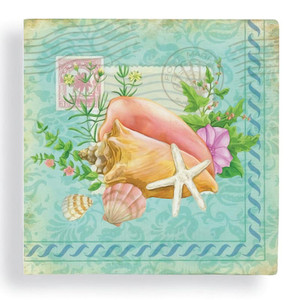 "Summer Sea Shells 5"" SQ Beverage Napkin 24 Count 15-213"