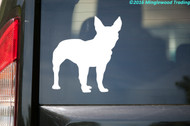 "Boston Terrier Dog Bull Boxwood American Gentleman Vinyl Decal Sticker 4.5"" x 5"""