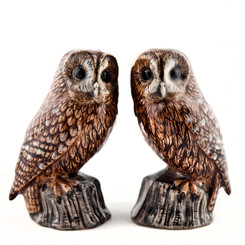 Tawny Owl salt and pepper
