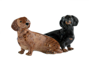 Dachshund Salt and Pepper