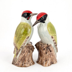 Woodpecker Salt and Pepper