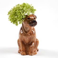 Border Terrier Flower vase