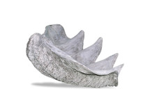Clam Shell Planter - Small