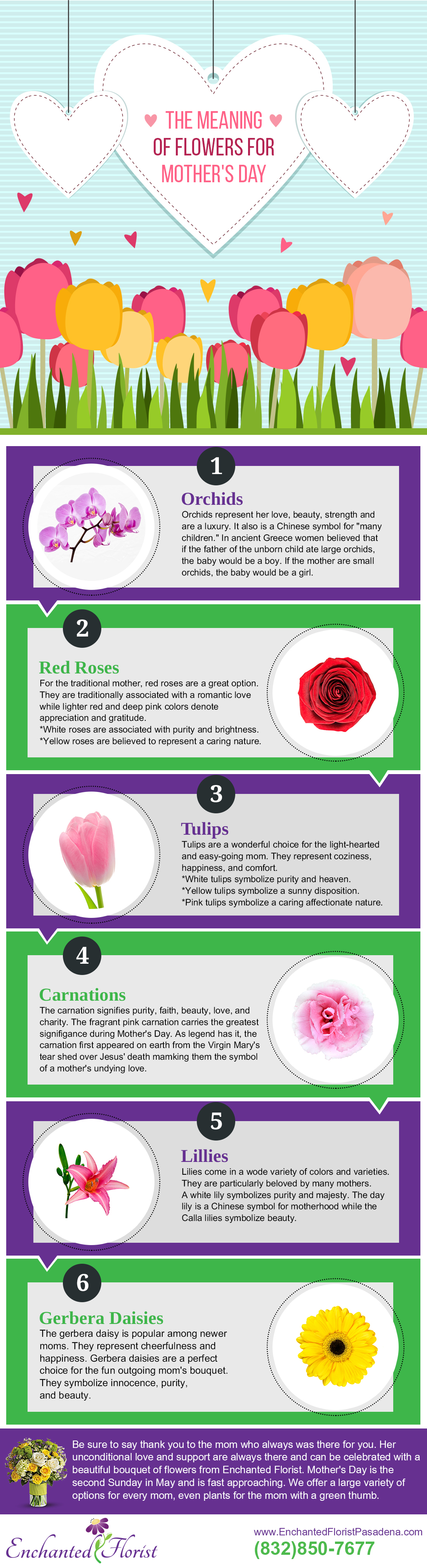Flowers Meanings And Pictures. Symbols Symbolism Meanings X. A Guide ...