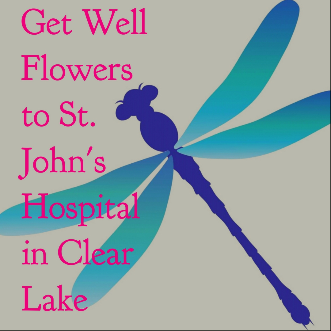 clear lake florist flower shop get well