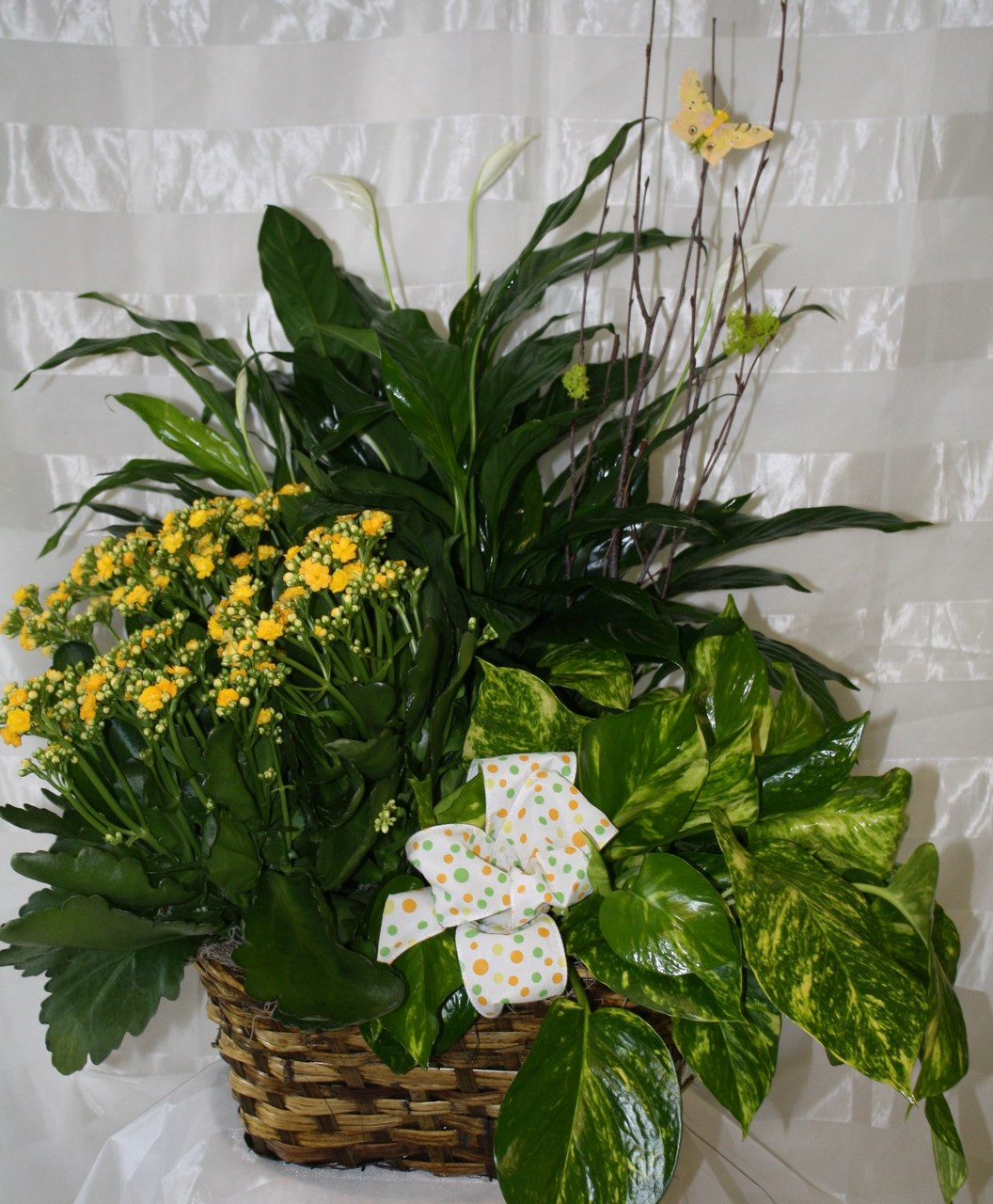 Green Plant And Blooming Plant Gardens Are Great Keepsakes