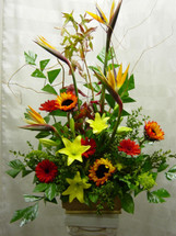 Life's Celebration Funeral Arrangement by Enchanted Florist Pasadena TX - bright and beautiful funeral flowers arranged in a funeral urn and includes tropical birds of paradise, bright yellow lilies, sunflowers, and gerbera daisies. Daily delivery to Houston funeral homes and churches for memorial services. RM507