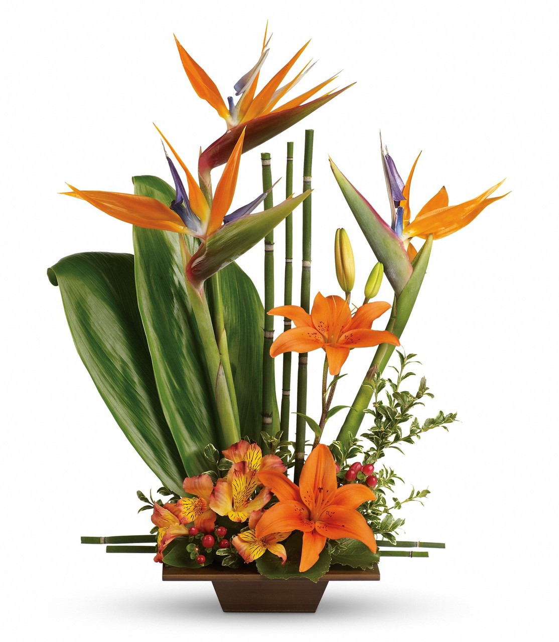 exotic grace tropical flower arrangement with birds of paradise, Natural flower