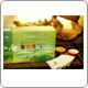 Premium Jasmine Green Tea (100 tea bags)