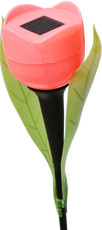 "17"" Tall  Pink Tulip Solar LED Light"