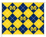 UNIVERSITY OF MICHIGAN-COLLEGE-UNIVERSITY-LOGO-PRINTED-FLEECE-NO SEW FLEECE BLANKET-FABRIC-08