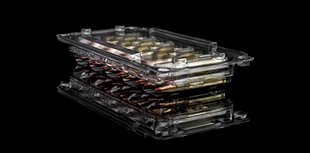 Rifle clear ammo box preview