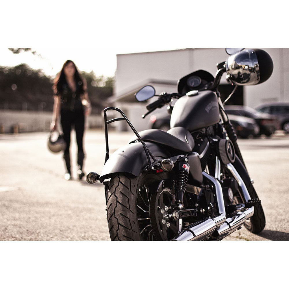 burly short sissy bar for 2004 2016 harley sportster get lowered cycles. Black Bedroom Furniture Sets. Home Design Ideas