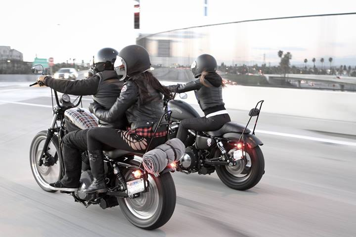 burly brand 39 s new sissy bars for harley sportster models get lowered cycles. Black Bedroom Furniture Sets. Home Design Ideas