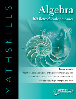 MathSkills Algebra (Digital Download)