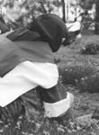 carmelite nuns gardening
