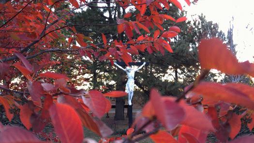 fall colors, carmelite enclosure