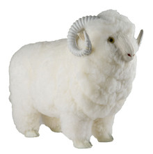 Large 3D Sheep