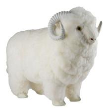Large 3D Sheep