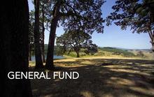 A14010 General Fund