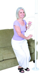 Security Pole & Curve Grab Bar by Stander