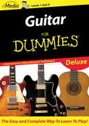 Guitar For Dummies Deluxe - Macintosh Download