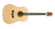 Peavy DW Acoustic