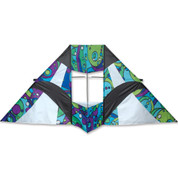 8.5 Ft Cool Orbit Box Delta Kite