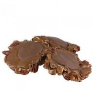Milk Chocolate Giant Naked Pecan Pattie