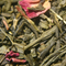 sencha Kyoto cherry rose green loose tea
