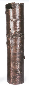 MICHAEL ARAM BARK VASE OXIDIZED LARGE