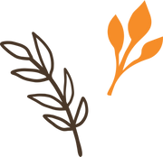 Fall Leaves SVG Cut File