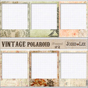 Vintage Polaroid Blog/Photo Frames 2